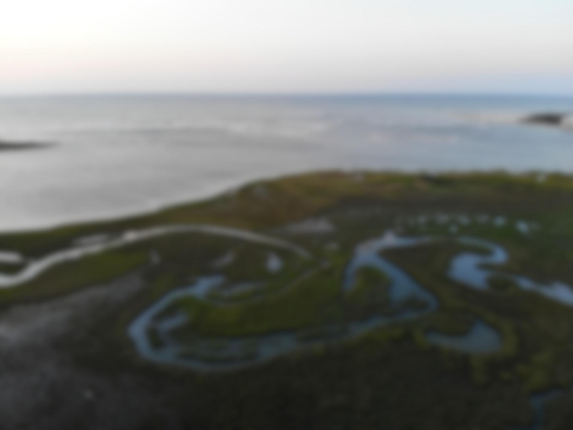 Santee River Delta